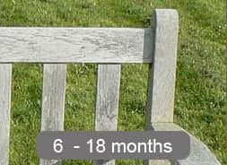 bench-ageing-process-12-months